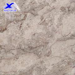 High polished Shangri-La grey marble